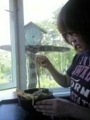 iowa noodles